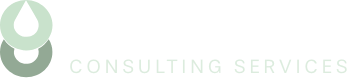 Chinook Consulting Services